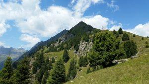 Wunderschön: das grasige Plateau zur Hahnenkammhütte.